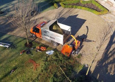 Tree Removal From Above 07-02-2018