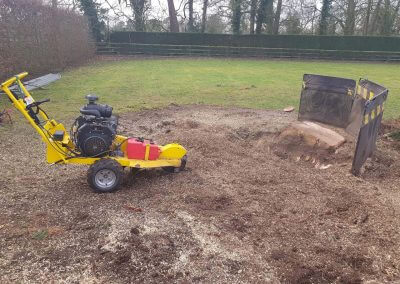 Stump Removal Finishing Tree Removal 08-02-2018