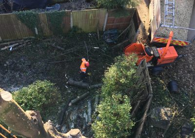 01122017 Sycamore Tree Removal Swinton From Above