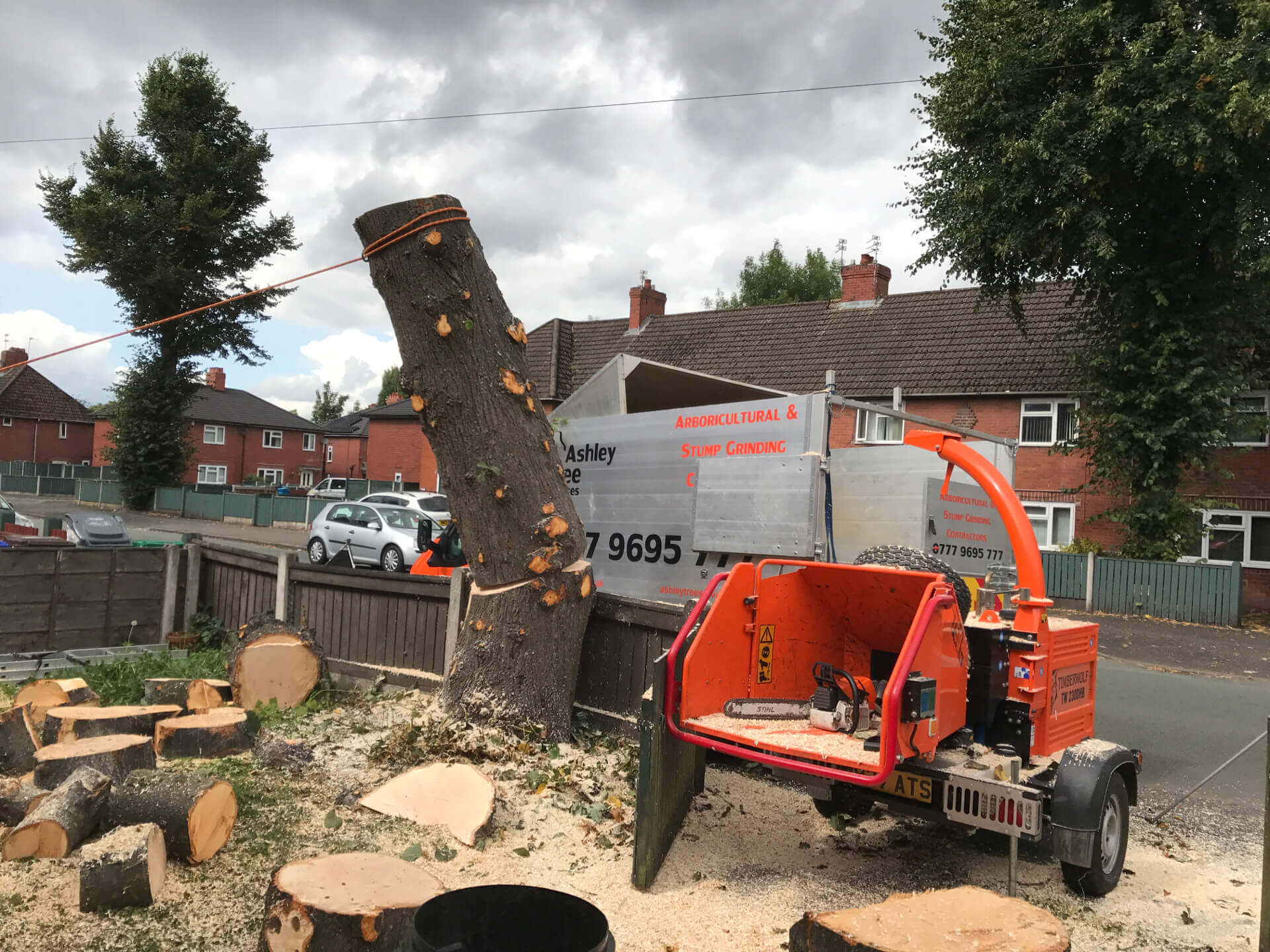 Lime Tree Removal Didsbury 5