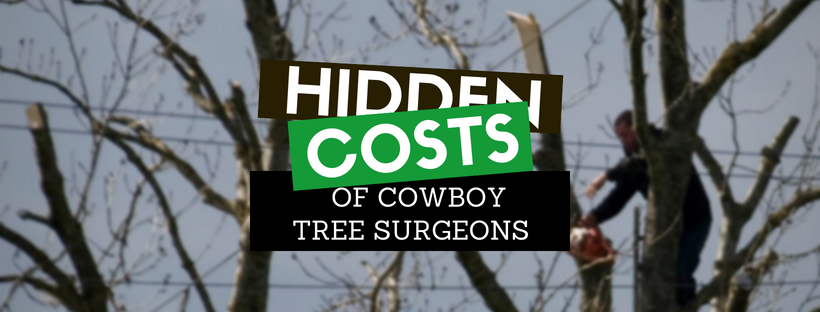 The hidden costs of cowboy tree surgeons: Beware – you could be left with a financial, legal, physical and psychological mess.