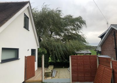 03112018 willow tree reduction Oldham Manchester 2