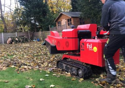 14112018 stump grinding Chorlton Manchester 2