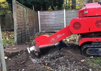 14112018 stump grinding Chorlton Manchester 3