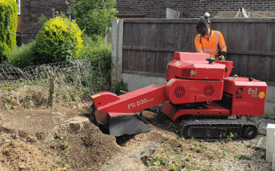 Stump grinding and removal in Manchester and Cheshire