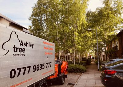Various tree job activities for property management company in Didsbury, Manchester – 07.05. – 09.05.2019.