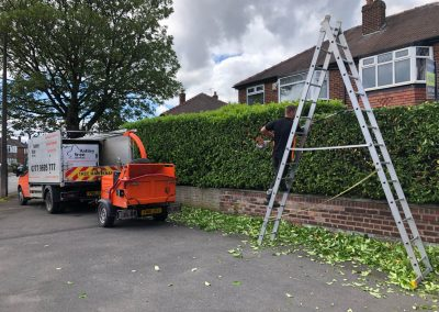 Various hedge trimming activities in Sale, Manchester – 21.06.2019.