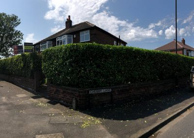 21062019 hedge trimming sale manchester 11