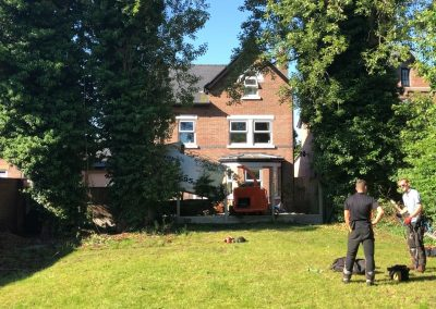 27062019 tree felling sale manchester 2