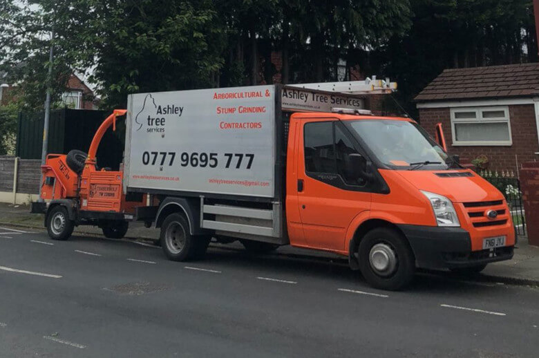Tree Surgeons in Manchester and Cheshire