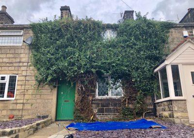 Ivy removal Ramsbottom, Manchester – 30.08.2019.